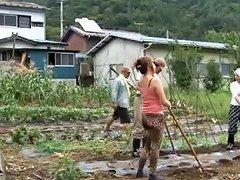 Farmer Milf Fucks Her Worker Out In A Field